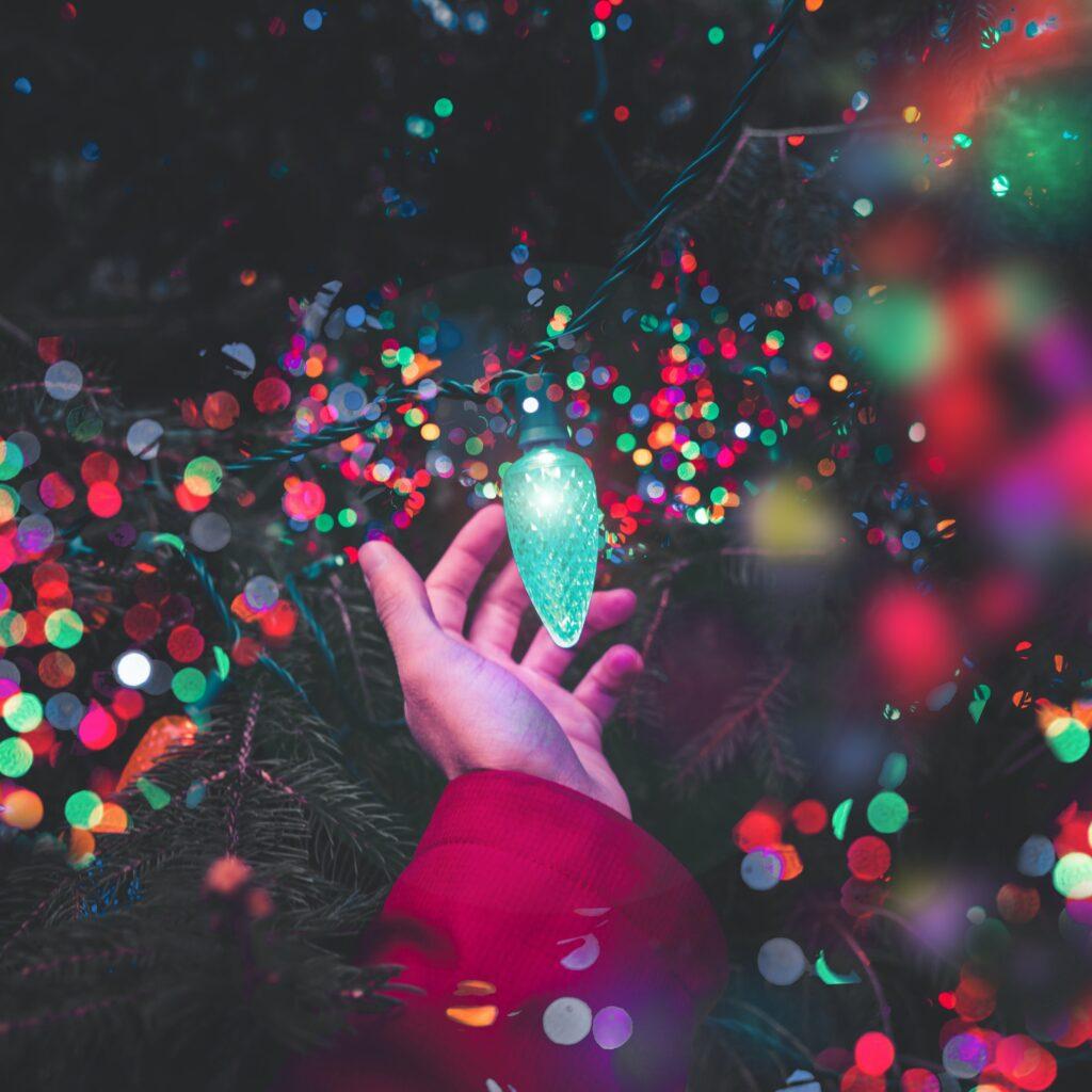 hand holding a christmas light